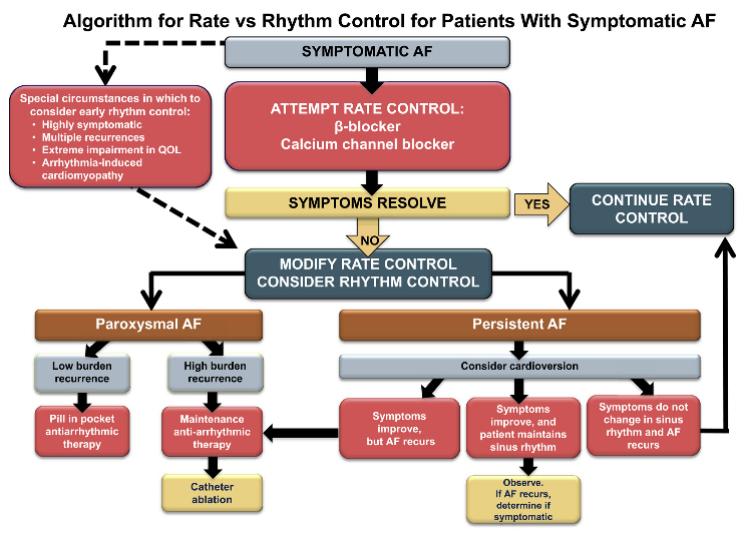 Part 4 Rhythm Management Of Af