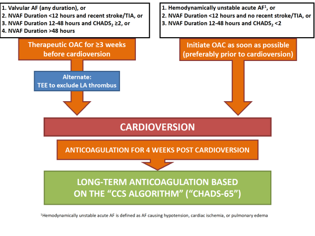 7 Anticoagulation in the Context of Cardioversion