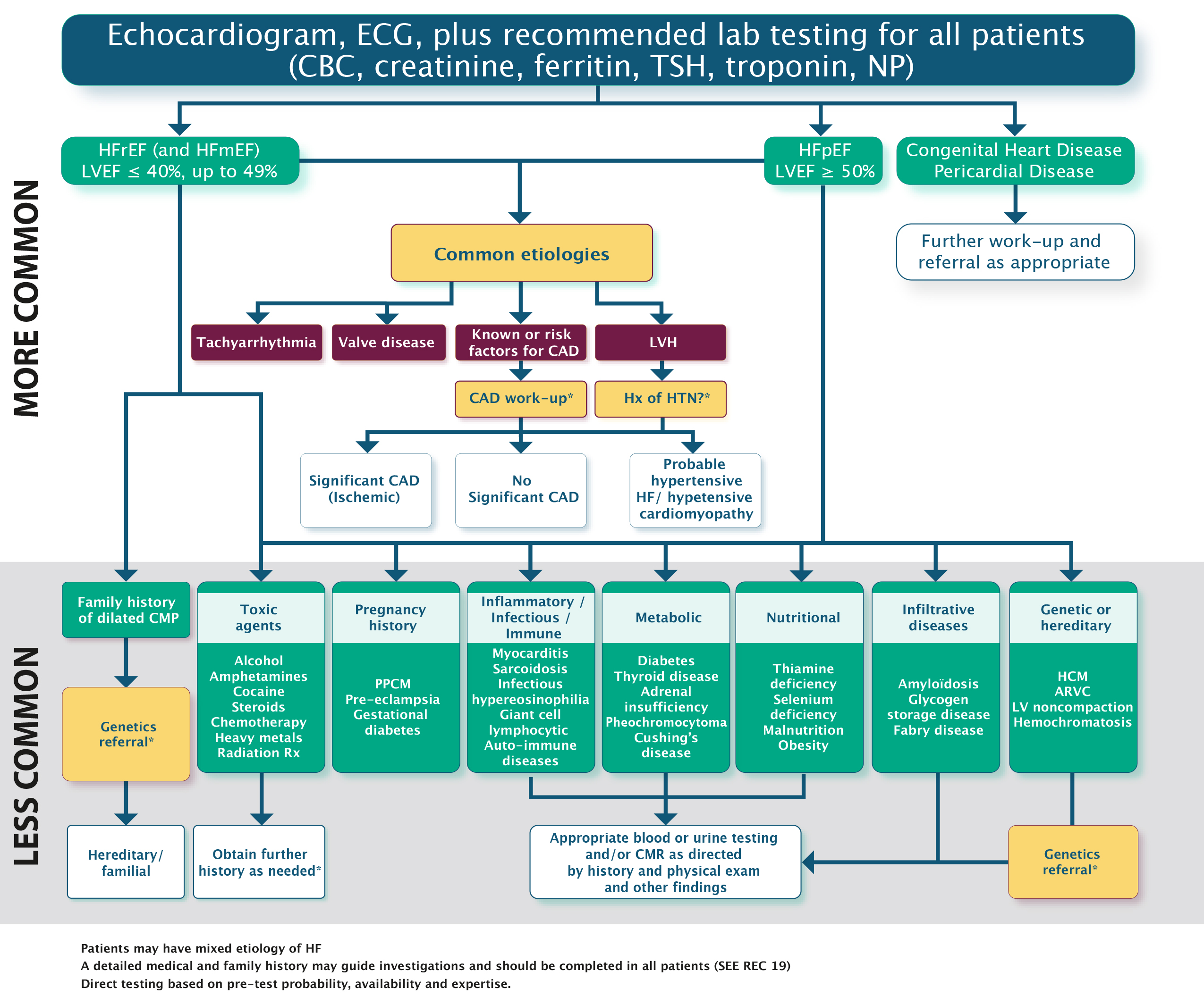 index of   eguidelines  content  resources  images  heartfailure